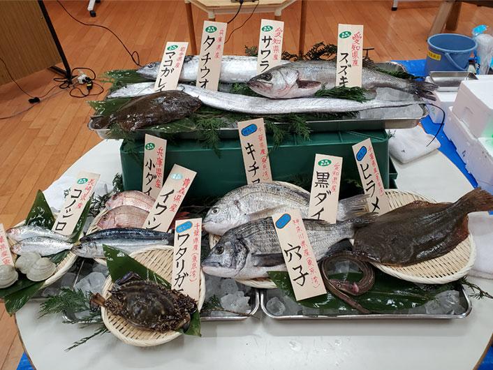 東京湾の逆襲